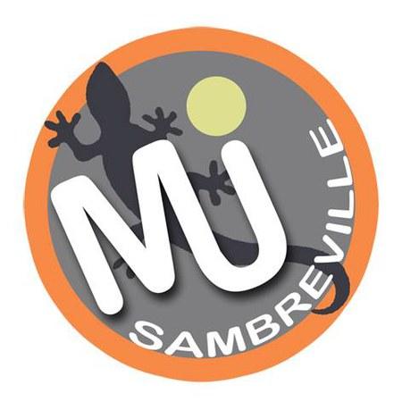 La MJ Sambreville à Tamines