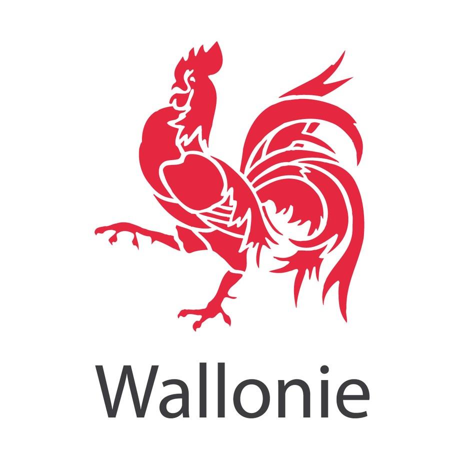 logo wallonie definitif